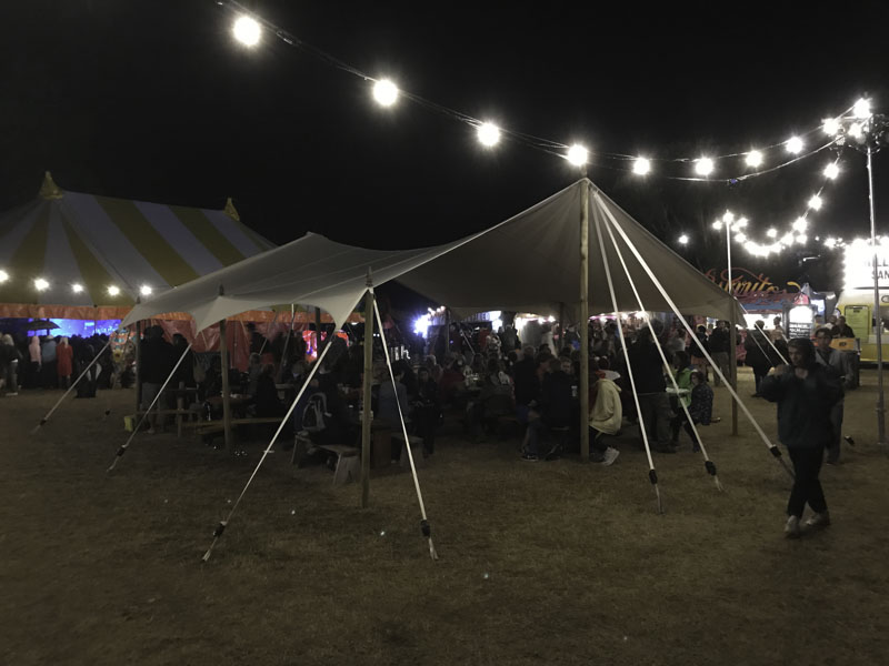 Festival Canopy Space